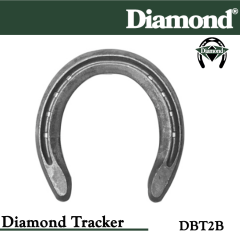 31-DBT2B,Diamond Catalog number DBT2B, Diamond Tracker size 2